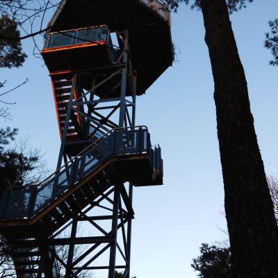 Der Kolkbergturm