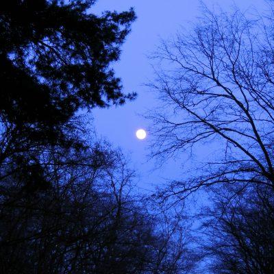 Der fast volle Mond