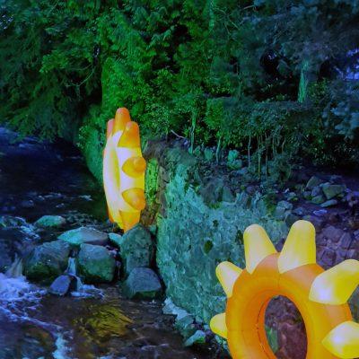 Leuchtblumen in der Bleiche