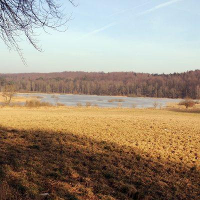 Süllitzer Flachwassersee