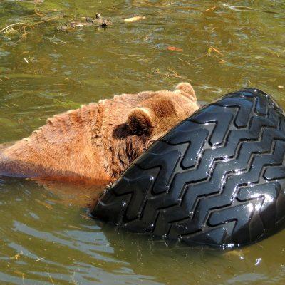 Reifen sind super. Im Wasser ...