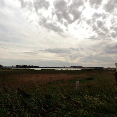Blick zum Tetzlitzer See