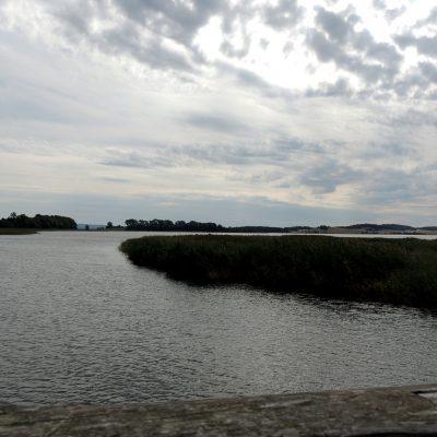 Blick von der Holzbrücke zum Tetzlitzer See