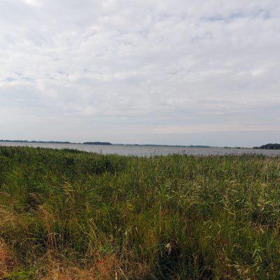 Der Tetzlitzer See