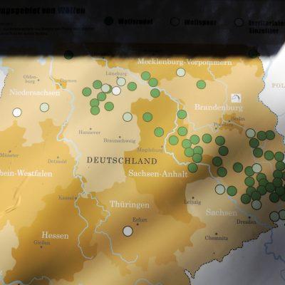 Verbreitung der Wölfe in Deutschland
