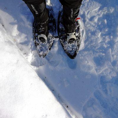 Die ersten Schritte mit den Schneeschuhen