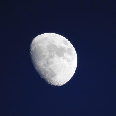 Luna am Abend