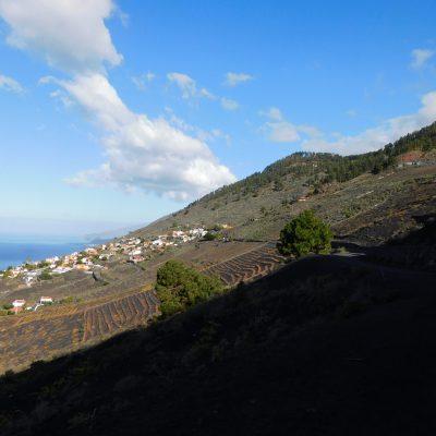 Blick nach Fuencaliente