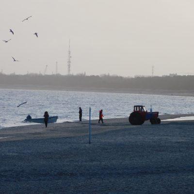 Die Fischer kommen zurück
